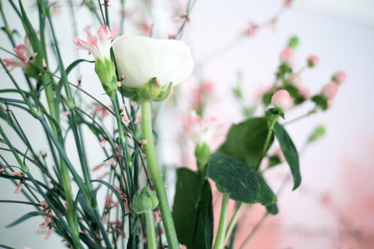 Einfach nur schön, Blumen.